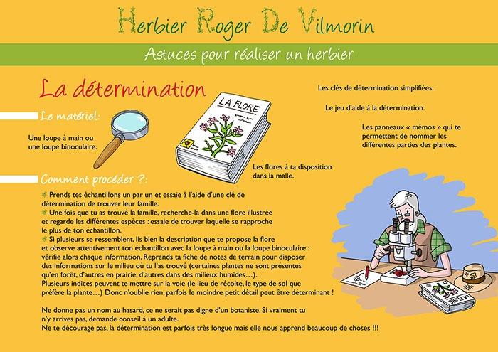PAGE-3-DETERMINATION